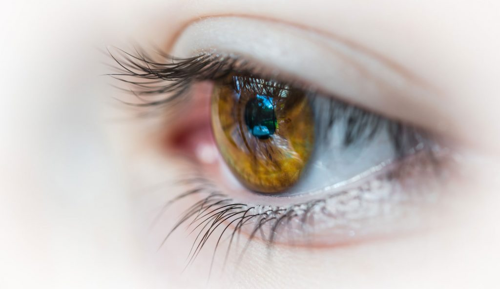 We do eyelid surgery only – Blepharoplasty – Upper and Lower